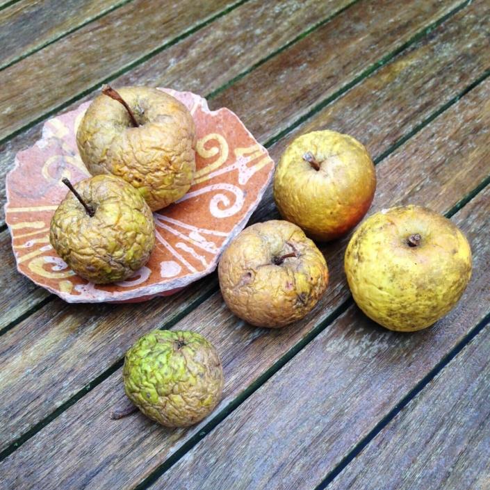 natuurlijk bewaarde appels in april